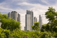 Buenos-Aires;Capital-city;city;Argentina;South-America;Argentinian;town;growth;high-rise;construction;wealth;economy;apartments;tower-block;level;crane;expansion;modern;accommodation;woodland;forest;green;nature-reserve;Costanera-Sur;tropical;vegetation;reclaimed;Rio-de-la-Plata;River-Plate