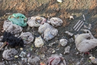 China;chinese;water;water-shortage;drought;river;rubbish;litter;environment;pollution;polluted;sewer;open-sewer;toxic;poisoned;dirty;disgusting;dead;drain;outfall;Hangang