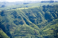 Malawi;Africa;aerial;aerial-photography;land;landscape;green;forest;tree;deforestation;farmland;river;maize;crops;food;subsistence-agriculture;hill;slope;farmstead
