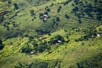 Malawi;Africa;aerial;aerial-photography;land;landscape;green;forest;tree;deforestation;farmland;river;maize;crops;food;subsistence-agriculture;hill;slope;farmstead;house