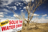 USA;US;America;California;brown;drought;dessicated;dried-up;climate-change;global-warming;parched;Kern-County;Kern-River;river-bed;burnt;Bakersfield;sand;sandy;tree;branch;dead;killed;red;sign;composite;water-crisis;crisis