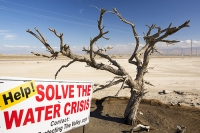 USA;US;America;California;brown;drought;dessicated;dried-up;climate-change;global-warming;parched;Kern-County;Bakersfield;Central-Valley;water-crisis;water-shortage;farming;soil;dust;dust-bowl;request;desperate;agriculture;tree;dead;killed;red;sign;composite;water-crisis;crisis