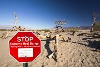 California;USA;America;Death-Valley;desert;drought;hot;dry;low;heat;National-Park;preserved;protected;mud-cracks;lake-bed;dessicated;barren;mountain;mountain-range;geology;rocks;sand;sandy;tumble-weed;tumbleweed;tree-dead;sand-dunes;Mesquite-Falt;composite;red;sign;warning;danger;extreme-heat