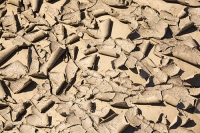 Malawi;Africa;flood;floods;flooding;African;disaster;climate-change;global-warming;refugee;Shire-Valley;destroyed;destruction;river-bank;eroded;erosion;undercut;washed-away;flood-debris;farming;agriculture;subsistence;drying-up;drying;dessicated;mud-cracks;pattern;shape;form;curl;curled-up