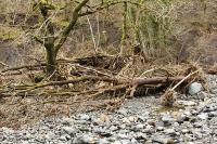 Floods;flooding;flooded;Cumbria;Lake-District;UK;Keswick;weather;extreme-weather;climate-change;global-warming;deluge;torrential-rain;downpour;meteorology;low-pressure;weather-front;rain;raining;heavy-rain;precipitation;flood-waters;river;swept-away;undermined;flood-damage;power;destroyed;destruction;flood-damage;ripped-apart;River-Greta;island;debris;tree