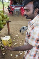 Bangalore;India;Asia;Karnataka;man;worker;shop;roadside;road;coconut;coconut-water;coconut-milk;fruit;food;drink;green;natural;knife;panga;split;open