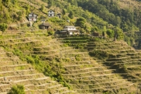 20121225_B18A5381.jpg Subsistence farming in the Annapurna Himalayas in Nepal. The terracing has been developed over centuries to farm this steep mountain land.