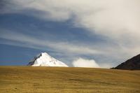 South-America;Bolivia;La-Paz;Huayna-Potosi;El-Alto;mountain;altitude;high;snow;glacier;backdrop;glacial-retreat;climate-change;global-warming;mountain-range;Cordillera-Real;Altiplano;grass;grassland;grazing;Lama;stock;herd
