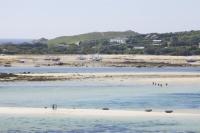 Cornwall;UK;coastal;sea;atlantic;ocean;sky;blue;outdoors;landscape;summer;sun;Tresco;island;Scilly;Scilly-Isles;Isles-of-Scilly;Gulf-Stream;mild;tropical;North-Atlantic-Drift;sea-temperature;ocean-current;vegetation;climate-change;global-warming;tropical;beach;sand;sandy;tide;low-tide;intertidal;aquamarine;shallow;sea-bed;sand-bar;low-tide