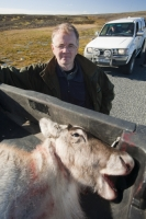 Iceland;Egilsstadir;Karahnjkar;hunter;hunting;shot;killed;dead;lottery;animal;Reindeer;mammal;meat;fur;coat;trailer
