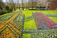 Keukenhof;Lisse;Holland;Netherlands;Spring;flower;flowers;bulb;tulip;tulips;bulb-fields;tulip-fields;horticulture;production;agriculture;floral;colour;colourful;Hyacinth;bouquet;specialist;red;yellow;orange;season;famous;garden;world-famous;Spring-garden;flower-bed;border;borders;grass;lawn;green;manicured;manicure;Daffodil;art;floaral-art;Big-Ben;Tower-Bridge