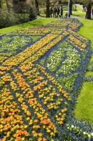 Keukenhof;Lisse;Holland;Netherlands;Spring;flower;flowers;bulb;tulip;tulips;bulb-fields;tulip-fields;horticulture;production;agriculture;floral;colour;colourful;Hyacinth;bouquet;specialist;red;yellow;orange;season;famous;garden;world-famous;Spring-garden;flower-bed;border;borders;grass;lawn;green;manicured;manicure;Daffodil;art;floaral-art;Big-Ben