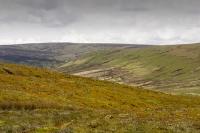 Forest-of-Bowland;Yorkshire;UK;Lancashire;peat;moorland;Trough-of-bowland;Bowland-fells;fell