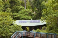 Australia;Queensland;Daintree;rainforest;woodland;trees;carbon-sink;environment;Daintree-rainforest;tropical;canopy;roof;sloar;solar-panel;solar-voltaic;renewable-energy;sun;green;carbon-neutral;solar-energy;electricity