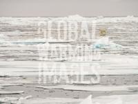 Svalbard-Spitzbergen-North-Arctic-warming-climate-change-global-