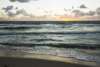 America;USA;Florida;Miami;beach;coast;ocean;sea;Atlantic;Atlantic-Ocean;Miami-Beach;dawn;morning;wave;shore;sunrise;gull;seagull;bird;flight;flying;Laughing-Gull