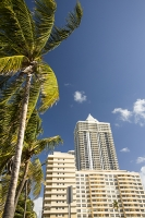 America;USA;Florida;Miami;beach;coast;Miami-Beach;light;real-estate;tower;tower-block;apartment;hotel;expensive;oceanfront;vulnerable;sea-level-rise;palm-tree;high-rise