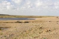 cley;Norfolk;UK;North-Norfolk;coast;tidal;beach;shingle;flint;cobble;damage;flood-surge;storm-surge;person;walker;walking;breach;breached;storm-beach;inundated;wildlife-reserve;bird-reserve