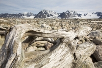 Spitsbergen;Svalbard-Arctic-Artic-Circle-Arctic-Ocean-landscape-hill-mountai