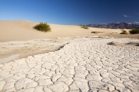 California;USA;America;Death-Valley;desert;drought;hot;dry;low;heat;National-Park;preserved;protected;mud-cracks;lake-bed;dessicated;barren;mountain;mountain-range;geology;rocks;sand;sandy;tumble-weed;tumbleweed;sand-dunes;Mesquite-Falt