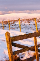 mountain;hill;weather;winter;cold;snow;Hartside;vista;view;fence;Pennines;North-Pennines;Hartside;dusk;sunset;cloud;contrast;snowpack;sunset;glow;warm;light;moorland;sedge;landscape;peat;gate;wooden;golden-gate;fence;entrance;passage;fence;Black-Fell