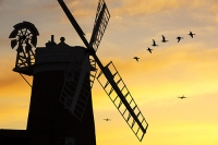 windmill;Cley-Next-the-Sea;North-Norfolk;UK;coast;wind-power;building;architecture;sail;house;sky;clear;dusk;evening;sunset;glow;orange;colourful;airplane;RAF;flight;flying;goose;geese;flock;fly;flying;bird;flight;wing;composite;Brent-Goose