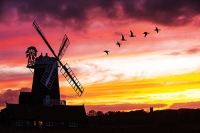 windmill;Cley-Next-the-Sea;North-Norfolk;UK;coast;wind-power;building;architecture;sail;house;sky;clear;dusk;evening;sunset;glow;orange;colourful;church;Blakeney;goose;geese;flock;fly;flying;bird;flight;wing;composite;Brent-Goose